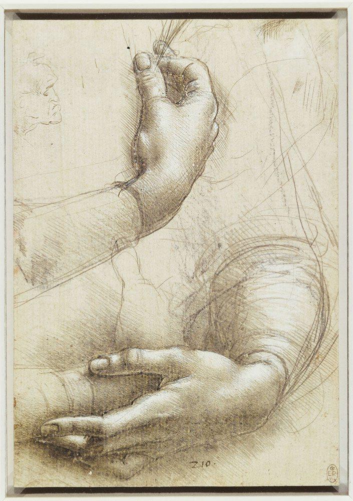 Studio di braccia e mani (per il Ritratto di Cecilia Gallerani) e profilo maschile, punta d'argento, rialzata di biacca su carta preparata rosata, anno 1486-1488, 210x150 mm. The Royal Collection / HM Queen Elizabeth II