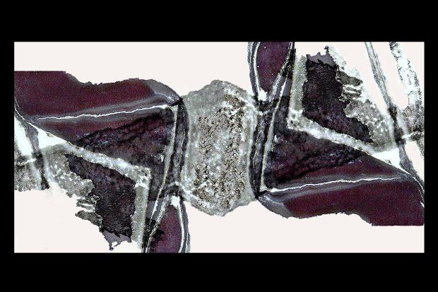 paolo-cortellessa-web-1